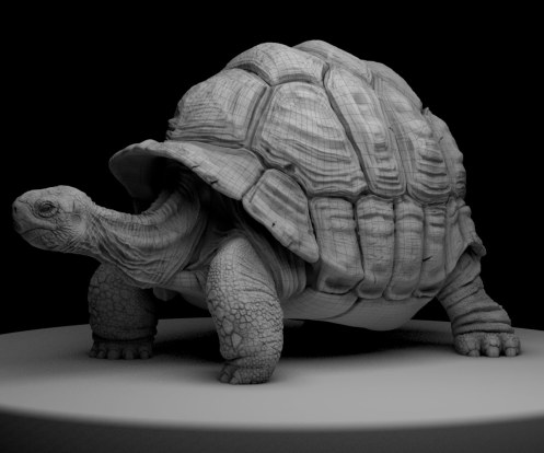 TortoiseWIP5